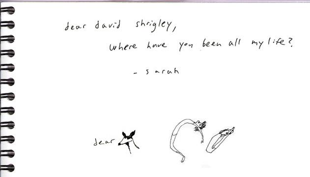 dear_david