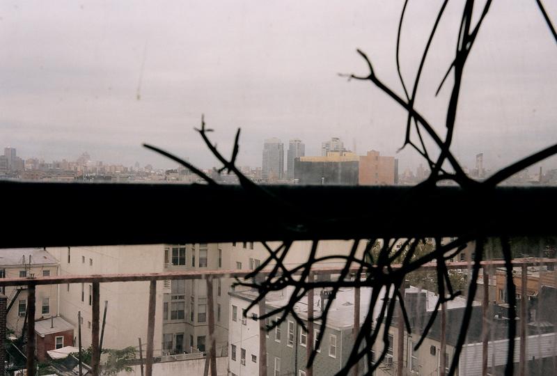 afterhailstorm